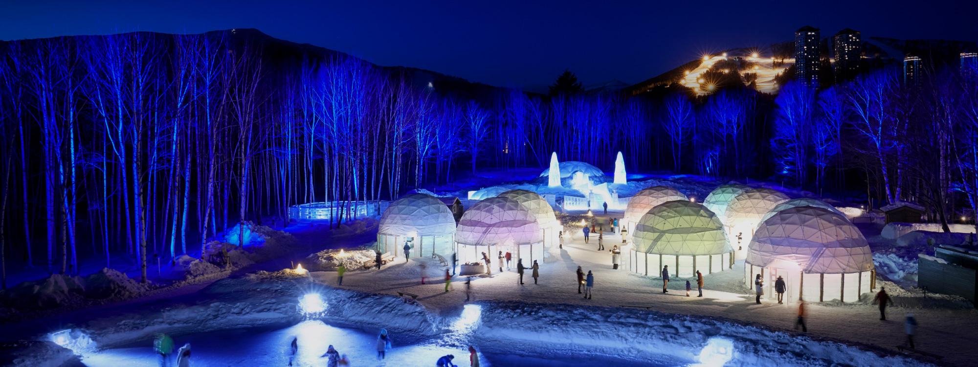 「愛絲冰城」的圖片搜尋結果